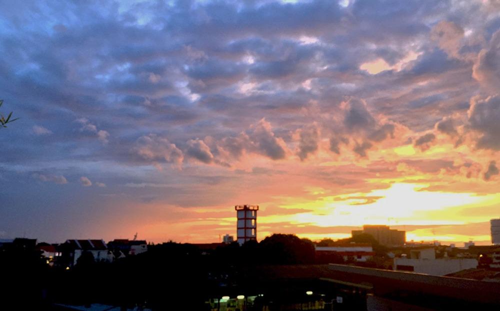 ringos-sunset